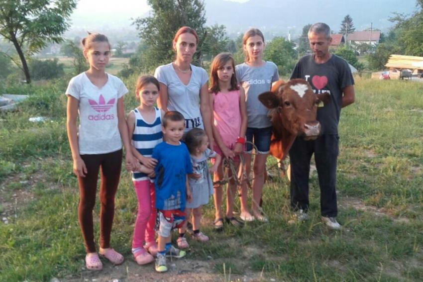 BBI banka nastavlja sa podjelom krava za socijalno ugrožene porodice
